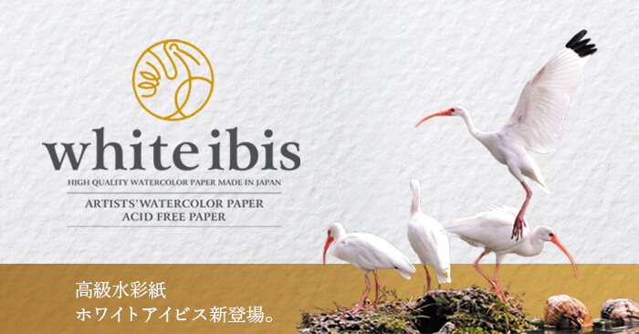「ホワイトアイビス水彩紙」新発売