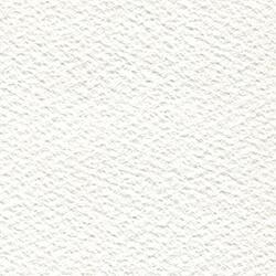 ホワイトアイビス水彩紙